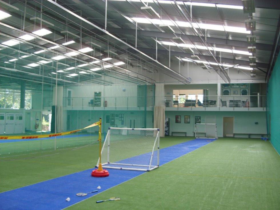 cricket training mindset works briceno firth